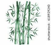 bamboo on white background.... | Shutterstock . vector #618929240