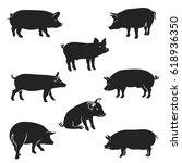 Pork Icon. Vector Image  Pig...