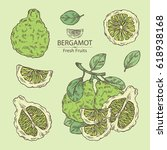 collection of bergamot and... | Shutterstock .eps vector #618938168