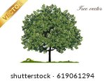 beautiful tree on a white... | Shutterstock .eps vector #619061294