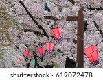 cherry blossoms   osaka japan | Shutterstock . vector #619072478