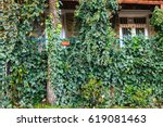 Urban Brick Wall With Leaves