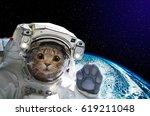 cat astronaut in space on... | Shutterstock . vector #619211048
