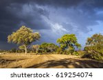safari gravel road in stormy... | Shutterstock . vector #619254074