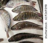Fresh Raw Tilapia Fish On Ice...