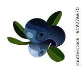 blueberries  bilberries... | Shutterstock .eps vector #619276670