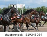 Harness Horse Racing. Horse...