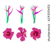 tropical flowers set.hibiscus... | Shutterstock .eps vector #619355453