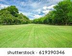 green grass field in park at... | Shutterstock . vector #619390346