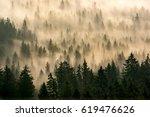 mist forest | Shutterstock . vector #619476626