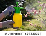 woman with gloves spraying a... | Shutterstock . vector #619530314