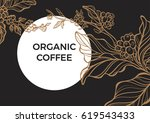 coffee branch with leaves and... | Shutterstock .eps vector #619543433