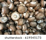 Royal Mushroom Champignons....