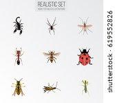 realistic wisp  ladybird ... | Shutterstock .eps vector #619552826