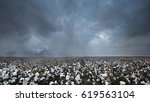 story skies over a texas cotton ... | Shutterstock . vector #619563104