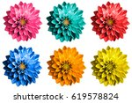 pack of colored surreal dahlia... | Shutterstock . vector #619578824