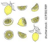 funny lemon  a character vector.... | Shutterstock .eps vector #619581989