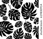 black and white monstera... | Shutterstock .eps vector #619830914