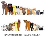 border of dogs and cats... | Shutterstock .eps vector #619875164