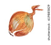 hand draw watercolor... | Shutterstock . vector #619885829