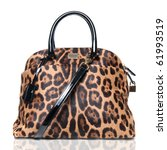 luxury leopard female bag... | Shutterstock . vector #61993519