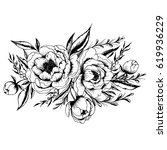 hand drawn black and white ink... | Shutterstock .eps vector #619936229
