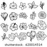 flower set | Shutterstock .eps vector #620014514