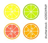 citrus slices of lemon  orange  ... | Shutterstock .eps vector #620024969