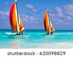 Catamaran On The Ocean Stock...