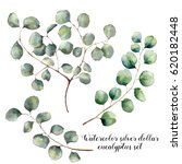 watercolor set with silver... | Shutterstock . vector #620182448