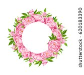 peony flowers wreath. tender... | Shutterstock . vector #620183390