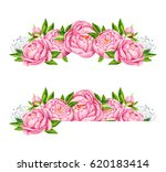 peony flowers borders. tender... | Shutterstock . vector #620183414