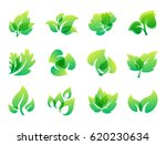 green leaf eco design friendly... | Shutterstock .eps vector #620230634