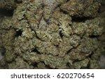 jar full of cannabis buds | Shutterstock . vector #620270654