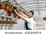 happy male nursery worker... | Shutterstock . vector #620343914
