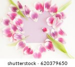 feminine stylish mock up with... | Shutterstock . vector #620379650