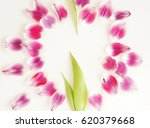 feminine stylish mock up with... | Shutterstock . vector #620379668