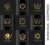 luxury logo set  | Shutterstock .eps vector #620395643