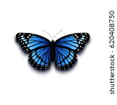 realistic butterfly icon... | Shutterstock .eps vector #620408750