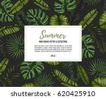 summer tropical background.... | Shutterstock .eps vector #620425910