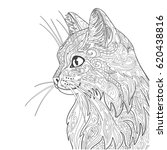 Stock vector cat coloring book page decorative doodle cat isolated on white 620438816