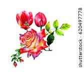 Stock photo bouquet of rose and tulips watercolor can be used as greeting card invitation card for wedding 620497778