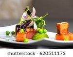 gourmet dish | Shutterstock . vector #620511173