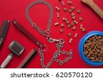 Stock photo pet accessories on red background top view 620570120