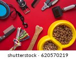 Stock photo pet accessories on red background top view 620570219