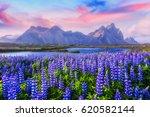 famous grass hills near... | Shutterstock . vector #620582144