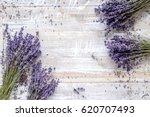 dry lavander design with...   Shutterstock . vector #620707493
