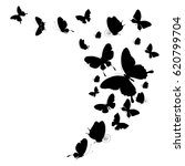 black butterfly  isolated on a... | Shutterstock . vector #620799704