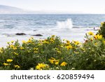 flowers and waves | Shutterstock . vector #620859494