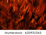 fire red feather texture ... | Shutterstock . vector #620931563